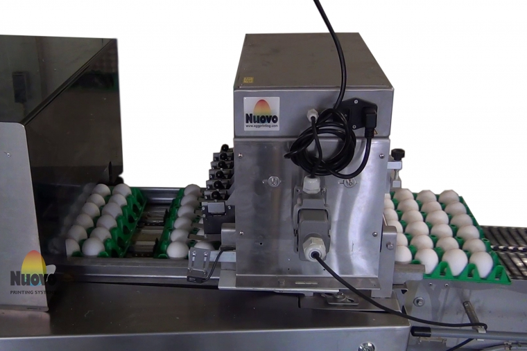 Nuovo Egg Printing and Egg Stamping Systems - Egg Jet Printer R6 on Mopack 150