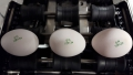 Nuovo Egg Printing and Egg Stamping Systems - Timbro Easy Stamp SOR su nastro ingresso Selezionatrici