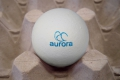 Nuovo Egg Printing and Egg Stamping Systems - Tamponneuse Easy Stamp R6 sur ligne de calibreuse