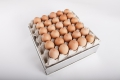 Nuovo Egg Printing and Egg Stamping Systems - Eierstempel Easy Stamp EMS1